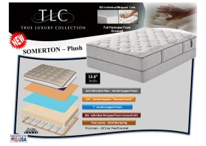 Somerton Plush Queen Mattress