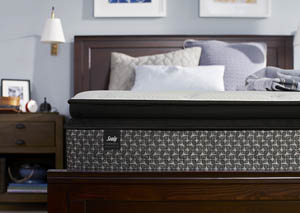 Happiness Plush Euro Pillowtop Mattress