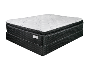 ELLIS Ultra Plush Queen Mattress & Foundation