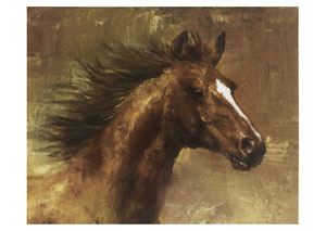 Brown Horse Canvas - 50