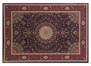 Blue/Red Traditional Area Rug - 7'10