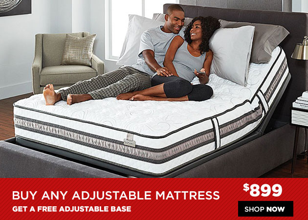Adjustable Mattress and Free Base