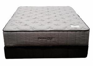 Image for Hometown Plush Queen Mattress