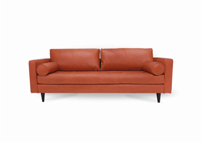 Image for Ladybird Leather Sofa