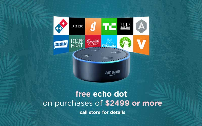 Free Echo Dot Purchase of $2499