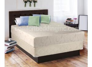 MEK Aloe10 Memory Foam/Mattress In a Box King Set