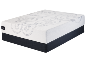 Hollinbank Memory Foam Twin Set