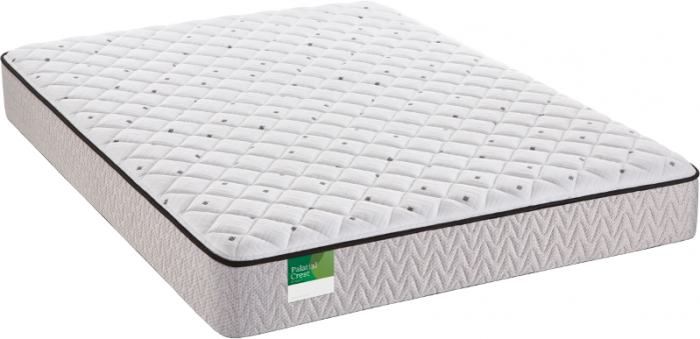 Sealy Queens Guard Plush Queen Mattress,Old Brick