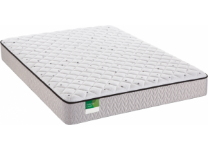 Sealy Queens Guard Plush Queen Mattress